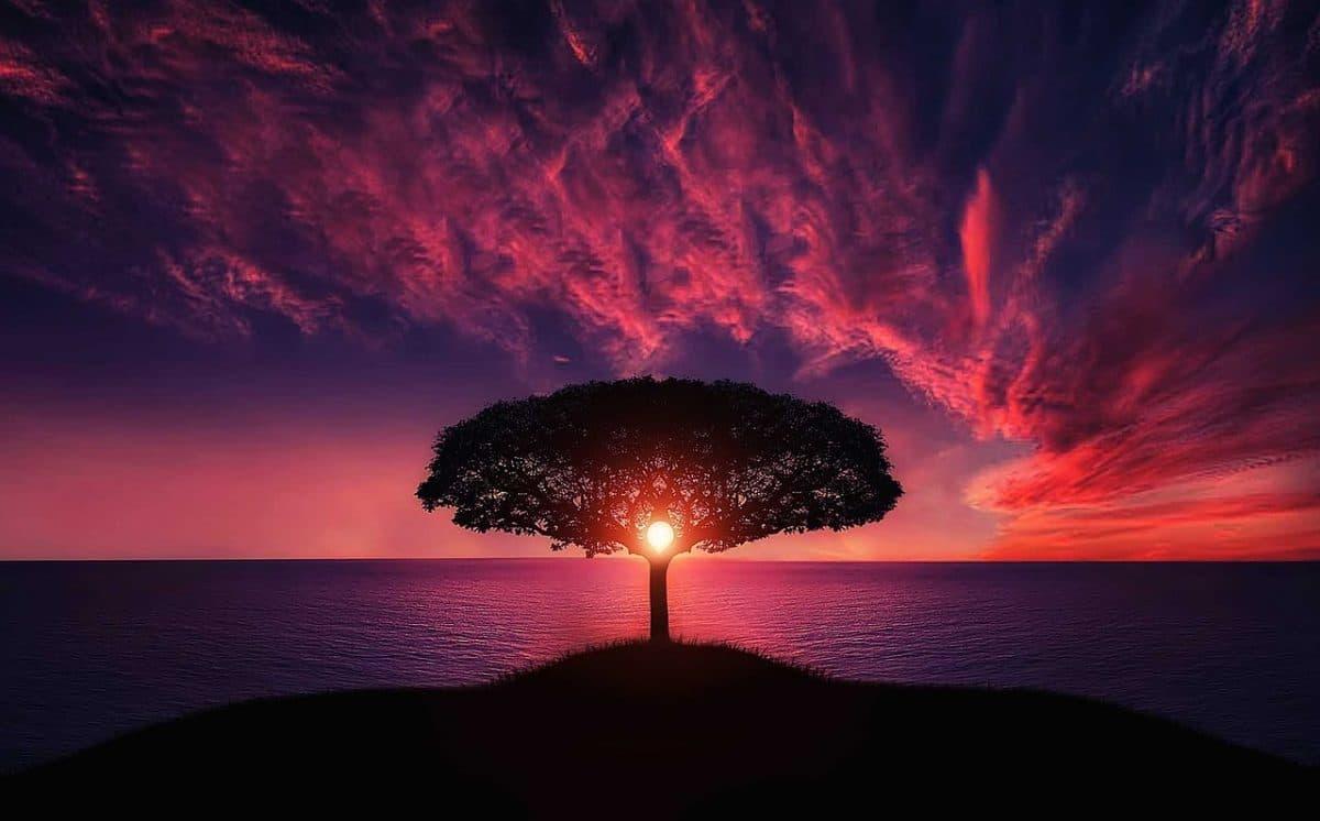 Spiritual Healing -99insights